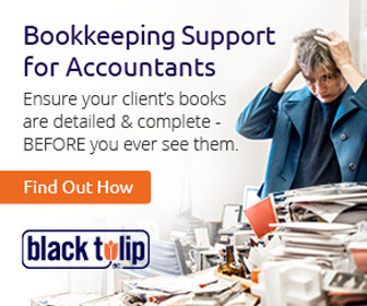 Bookkeeping Support for Accountants